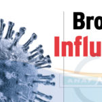Brote de Influenza
